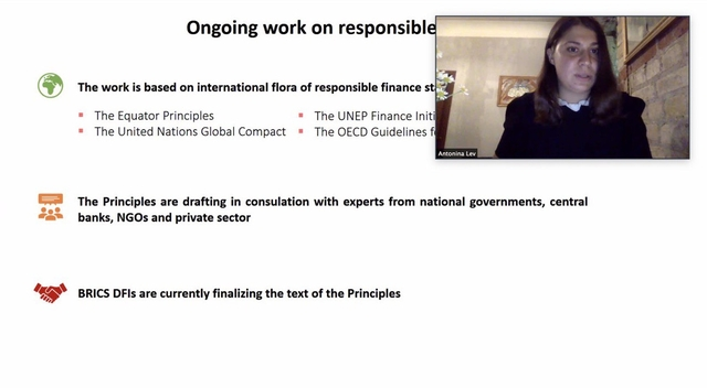 Workshop on Responsible Financing in BRICS DFIs: International Standards and Practices, 23 July 2020, Zoom
